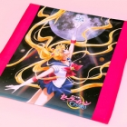 Sailor Moon Crystal Microfibre Cloth